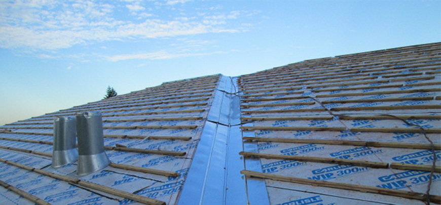 Construction Defect Litigation Roof Inspection Photo